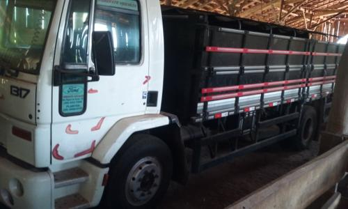 Ford Cargo 1317 (2)