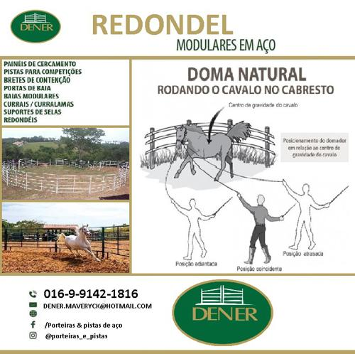 Ranch Sorting E Redondel (3)