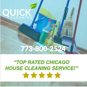 Maid Services In Chicago. (1)