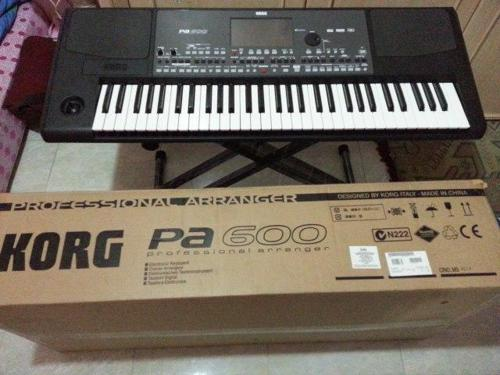 Korg Pa600 Arranger Keyboard  (1)