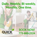 Spring Cleaning Services In Chicago